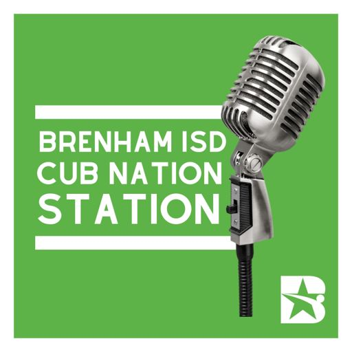Cover art for podcast Cub Nation Station