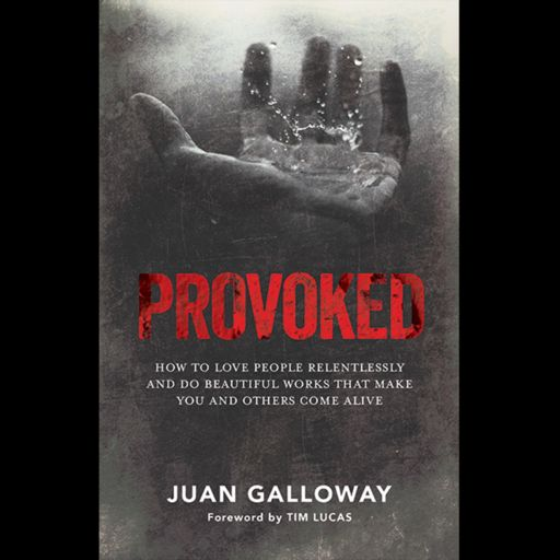 Cover art for podcast PROVOKED, The Podcast