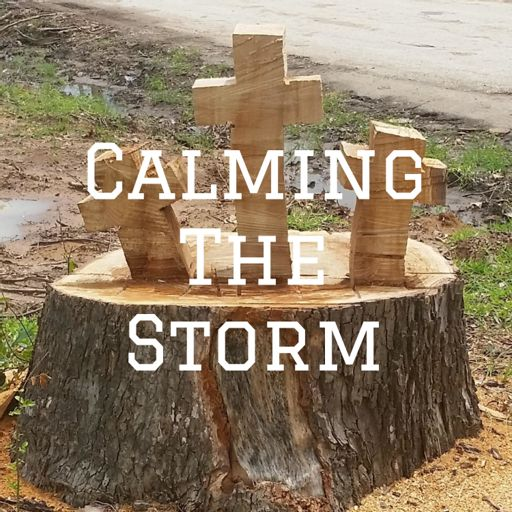 Cover art for podcast Calming The Storm