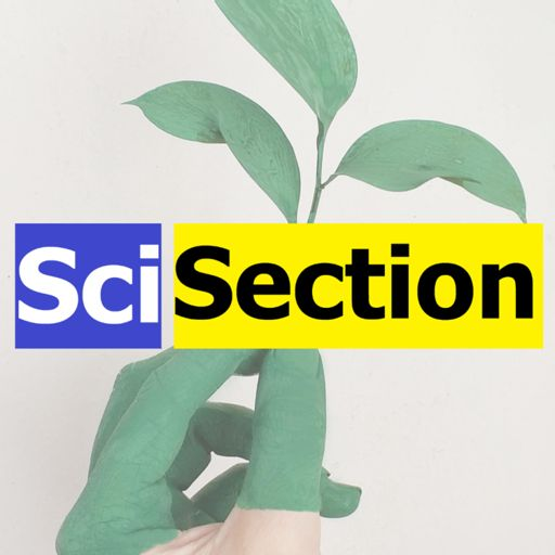 Cover art for podcast SciSection