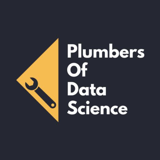 Cover art for podcast Plumbers of Data Science