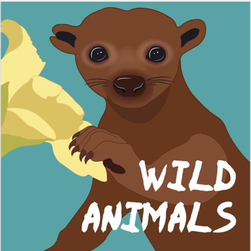 Cover art for podcast Wild Animals