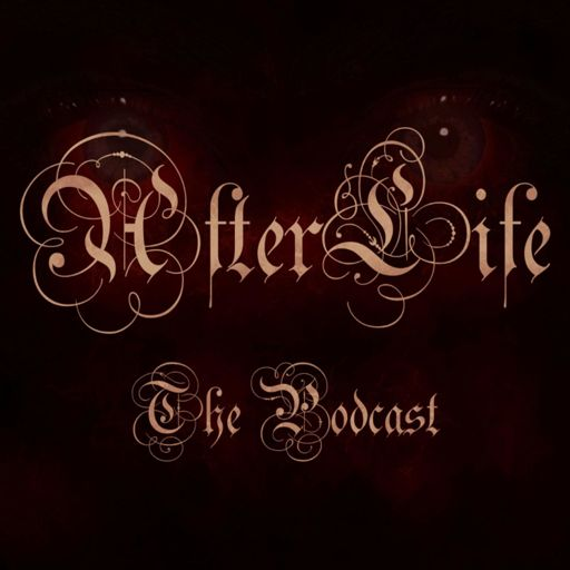 Cover art for podcast AfterLife