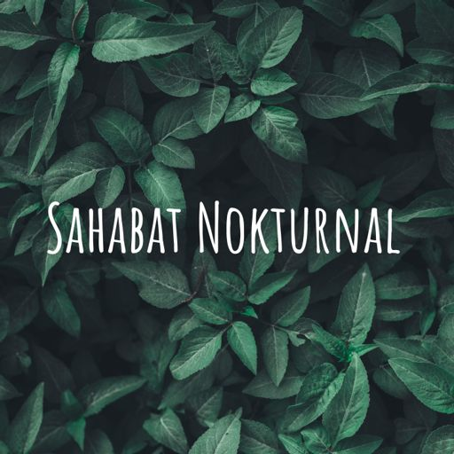 Cover art for podcast Sahabat Nokturnal