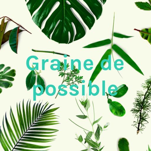 Cover art for podcast Graine de possible