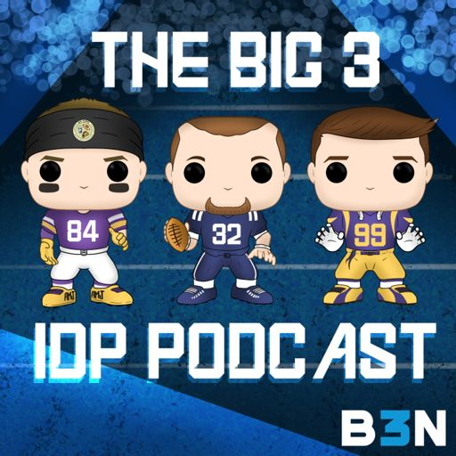 Cover art for podcast The Big 3 IDP Podcast