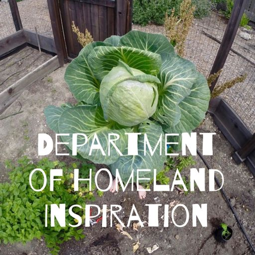 Cover art for podcast The Department of Homeland Inspiration