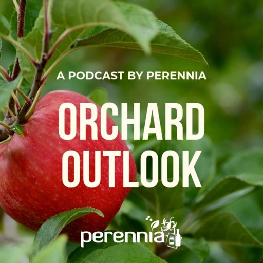 Cover art for podcast Orchard Outlook