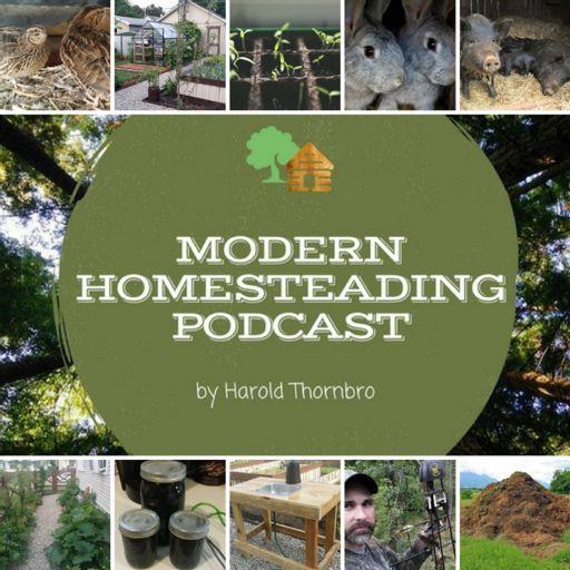 Cover art for podcast The Modern Homesteading Podcast