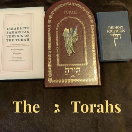 Cover art for podcast The 3 Torah's