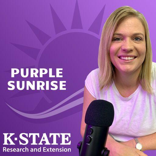 Cover art for podcast Purple Sunrise