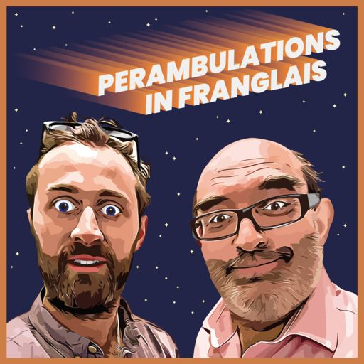 Cover art for podcast Perambulations In Franglais