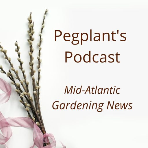 Cover art for podcast Pegplant's Podcast