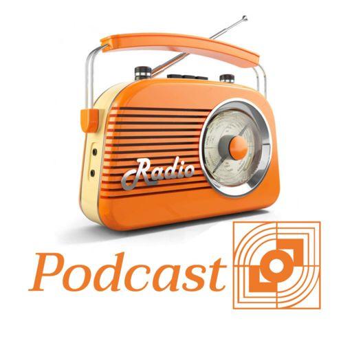 Cover art for podcast De actualiteit in Landsmeer.