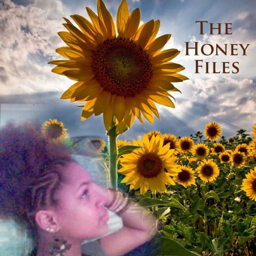 Cover art for podcast The Honey Files