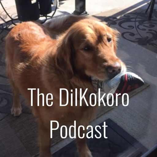 Cover art for podcast The DilKokoro Podcast