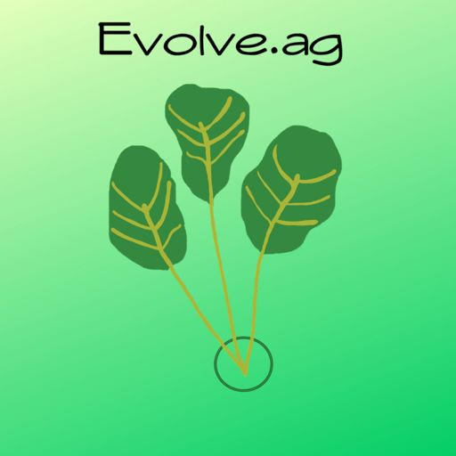 Cover art for podcast Evolve.ag