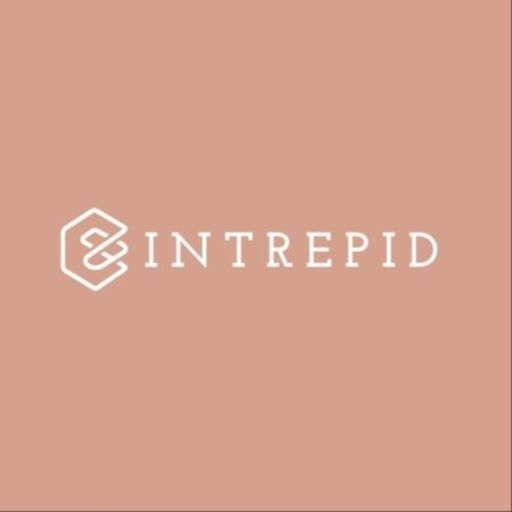 Cover art for podcast The Intrepid