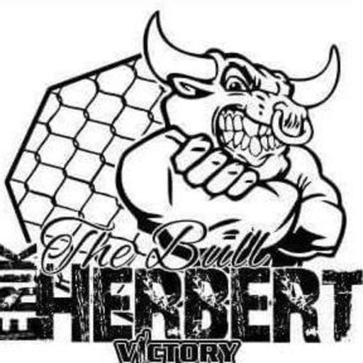 Cover art for podcast The Erik Herbert Podcast