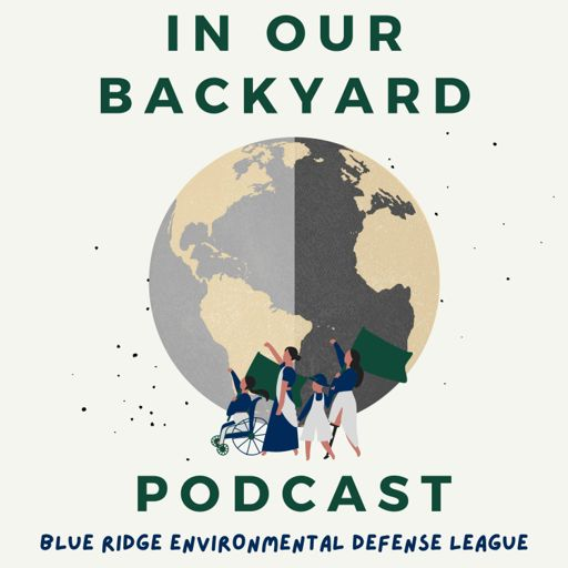 Cover art for podcast In Our Backyard Podcast