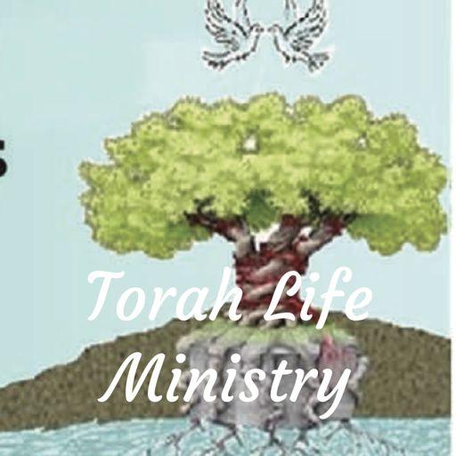Cover art for podcast Torah Life Ministry