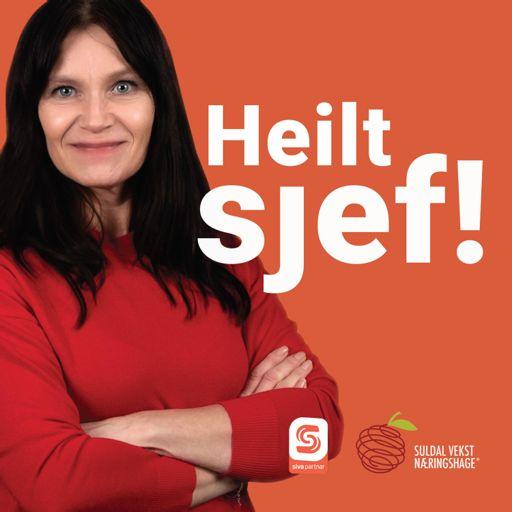 Cover art for podcast Heilt Sjef!