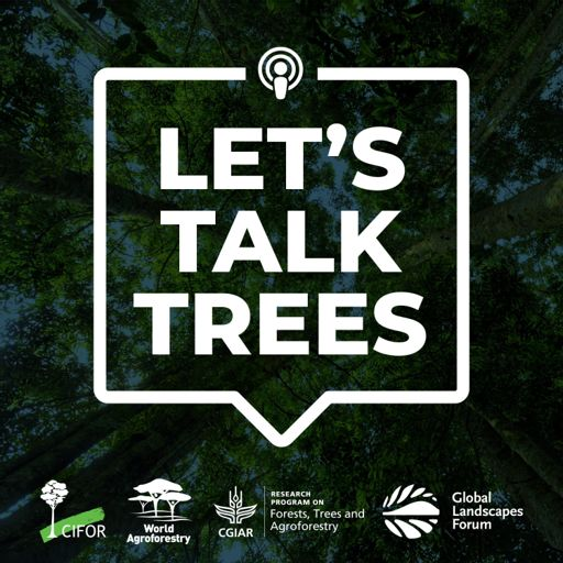 Cover art for podcast Let's Talk Trees