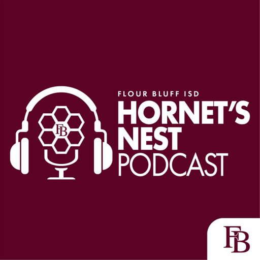 Cover art for podcast Hornet's Nest Podcast