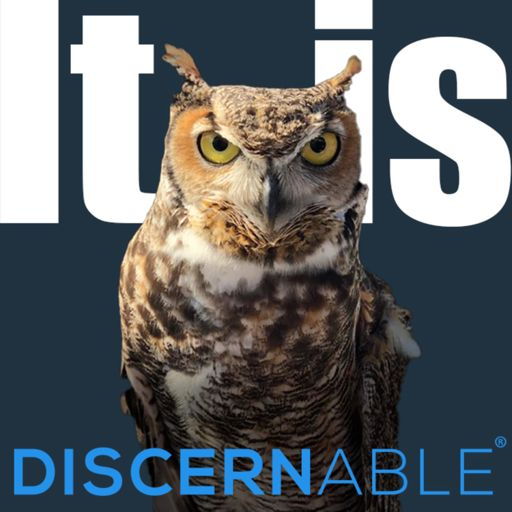 Cover art for podcast It is Discernable®