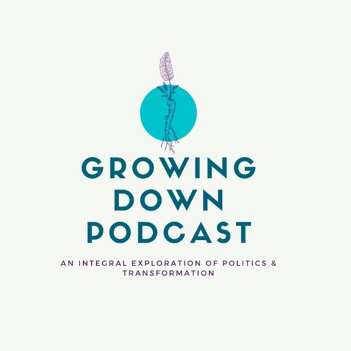 Cover art for podcast Growing Down: A Progressive Integral Podcast