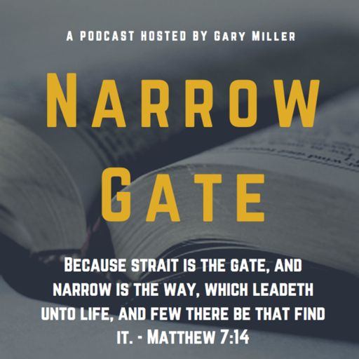 Cover art for podcast The Narrow Gate
