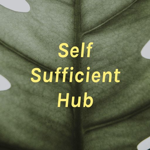 Cover art for podcast Self Sufficient Hub