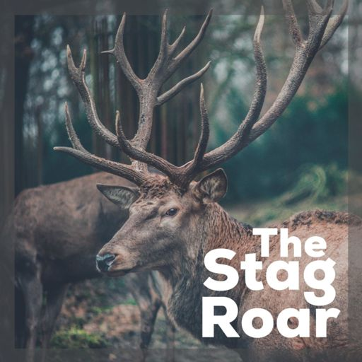 Cover art for podcast The Stag Roar: Life Less Ordinary
