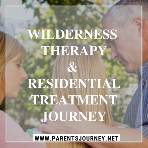 Cover art for podcast Wilderness Therapy & Residential Treatment Center Journey