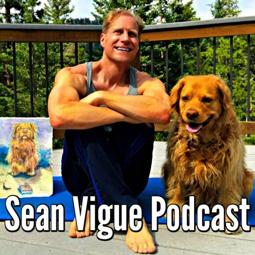 Cover art for podcast Sean Vigue Podcast