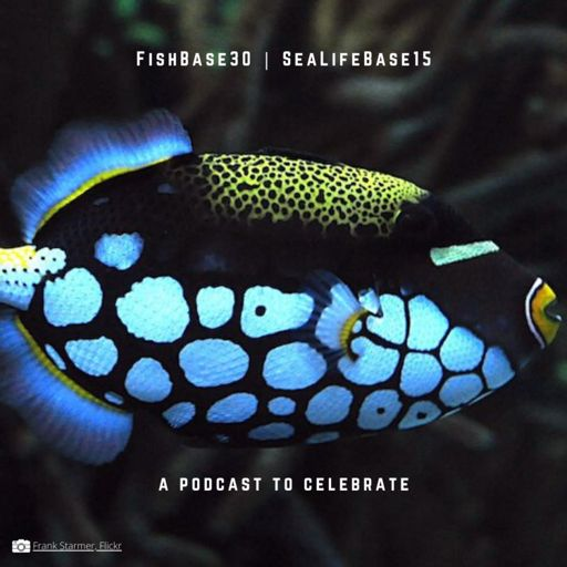 Cover art for podcast FishBase and SeaLifeBase Anniversary Podcast
