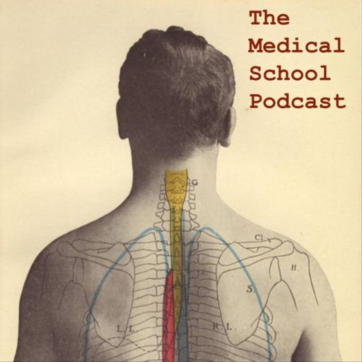 Cover art for podcast The Medical School Podcast