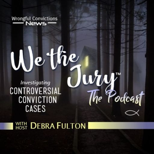 Cover art for podcast We the Jury