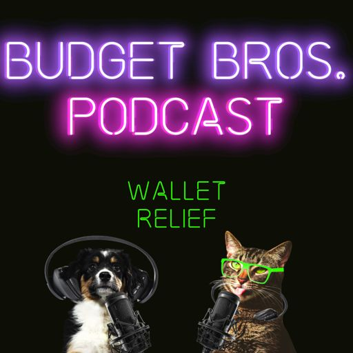 Cover art for podcast Budget Bros Podcast