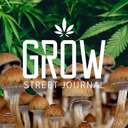 Cover art for podcast Grow Street Journal