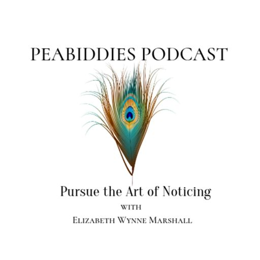 Cover art for podcast Peabiddies: Pursue the Art of Noticing
