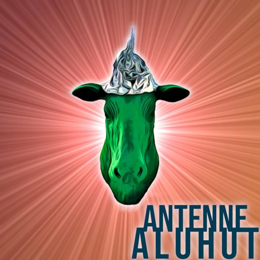 Cover art for podcast Antenne Aluhut