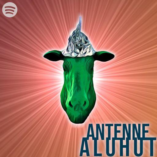 Cover art for podcast Antenne Aluhut