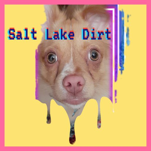 Cover art for podcast The Salt Lake Dirt Podcast