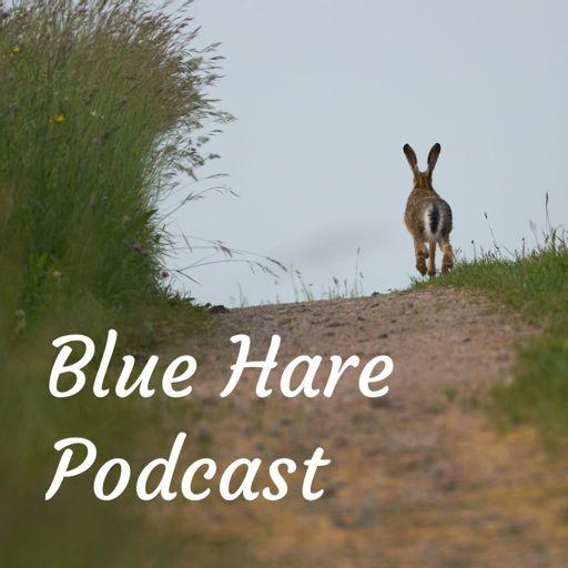 Cover art for podcast Blue Hare Podcast ~ On Storytelling