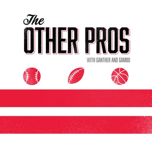 Cover art for podcast The Other Pros