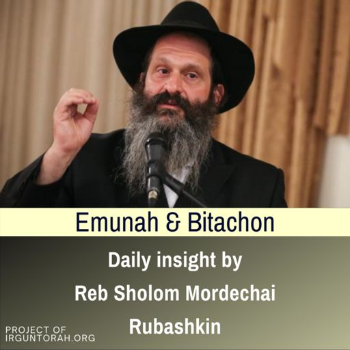 Cover art for podcast Daily insight on Emunah & Bitachon by Reb Sholom Mordechai Rubashkin