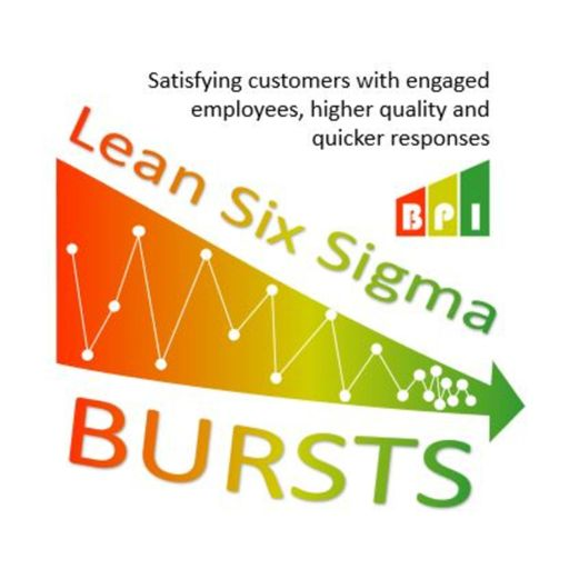 Cover art for podcast Lean Six Sigma Bursts