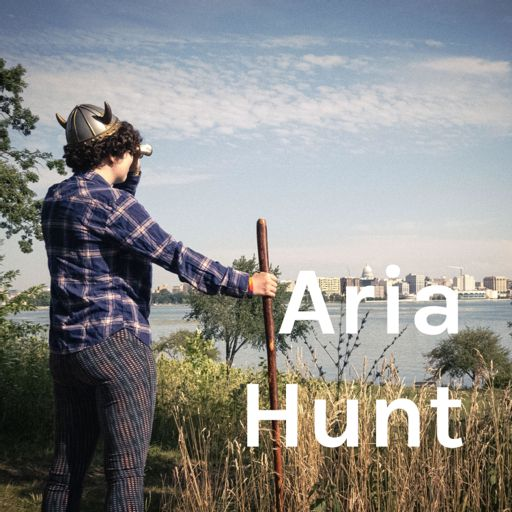 Cover art for podcast Aria Hunt