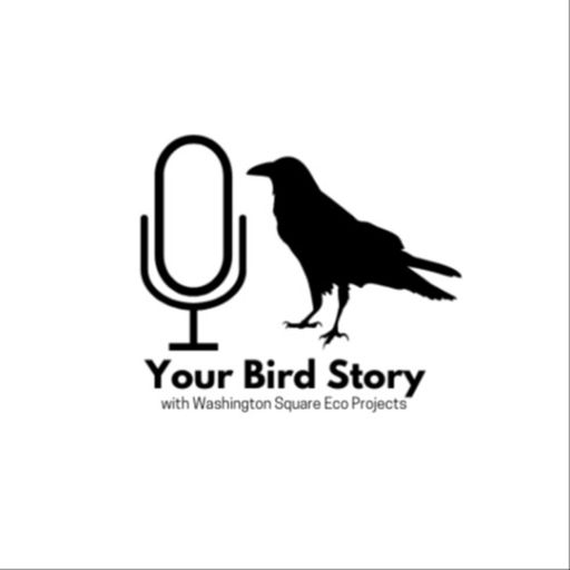 Cover art for podcast Your Bird Story